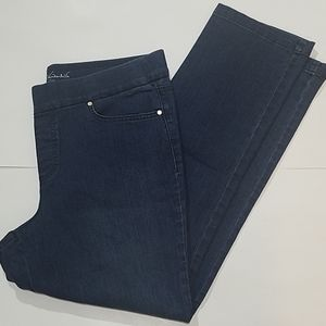 Gloria Vanderbilt Pull Up Slimming Jeans 16P